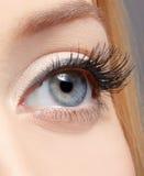 Eye zonplanerar makeup Arkivfoto
