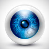 Eyeball. Vector: details of eyeball, blue Royalty Free Stock Image