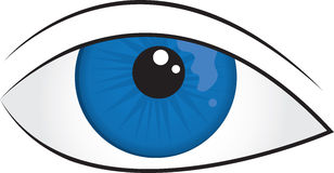 Eyeball Royalty Free Stock Image
