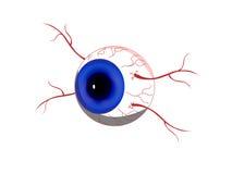 Eyeball. Blue Eyeball on transparent background stock illustration