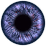 Eyeball closeup view Royalty Free Stock Photos