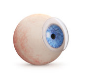 Eyeball with contact lens Stock Photography