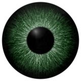 Eyeball green color texture isolated white background. 3d eye black round stock photo