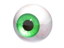 Eyeball isolated 3d model. Green eyeball isolated 3d model Royalty Free Stock Images