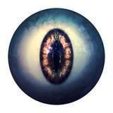Eyeball of monster Stock Photo