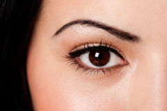 Eyebrow and eye stock photo