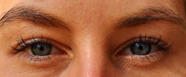 Eyebrow, Face, Eyelash, Eye