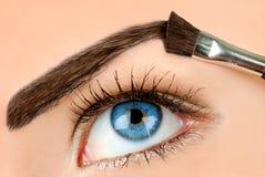 Eyebrow makeup. Blue eyes girl eyebrow makeup royalty free stock images