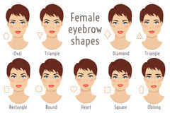 Eyebrow shapes suitable to different woman type face. Vector ill. Set of vector eyebrow shapes. Eyebrows that are suited to different types of woman face. Set of Stock Photo