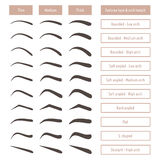 Eyebrow shapes. Various brow types. Vector table with eyebrows and captions. Stock Photo