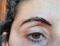 The Eyebrow Tattoo. Semi-permanent eyebrow tattoo royalty free stock photos