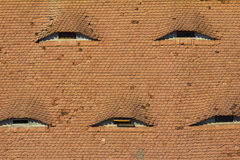 Eyebrow windows in Hungary. Eyebrow windows on tiled roofs in Hungary Royalty Free Stock Photos