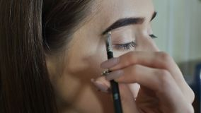 Eyebrows Care. Closeup Of Woman Beautiful Blue Eye, Perfect Shaped Brow, Long Eyelashes With Professional Makeup And. Brow Gel Brush. Young Female Model Shaping stock footage