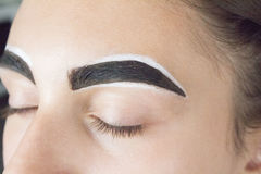 Eyebrows with henna Royalty Free Stock Photo