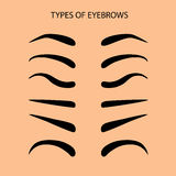 Eyebrows Set Flat Vector Illustration. Basic Set eyebrow shapes Vector illustration eyebrows Stock Photography