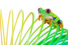 eyed вал игрушки красной весны лягушки стоковое изображение