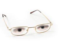 eyeglasses ανασκόπησης λευκό ζε&upsil Στοκ Εικόνα