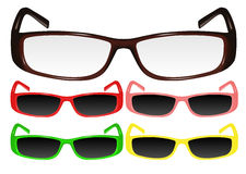 Eyeglasses. Vector image of correction glasses and sun glasses with  frame of various colours Royalty Free Stock Image