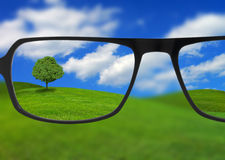Eyeglasses clarifying vision. Prescription eyeglasses clarifying the view of a tree in a country field Stock Photos