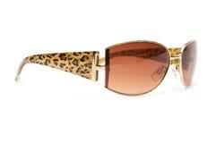 Eyeglasses closeup Royalty Free Stock Photography