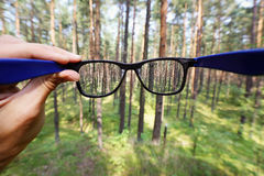 Eyeglasses in the hand over blurred forest background Stock Image