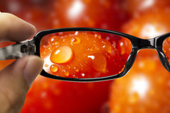 Eyeglasses looking for tomato Stock Image