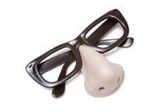 eyeglasses śmieszny nos Zdjęcie Royalty Free