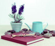 Eyeglasses on red diary. Eyeglasses on red diary with lavender vase and a watering can for business concept. Adjust color to look old Stock Photo