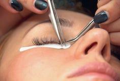 eyelash διαδικασία επέκτασης, τα σαλόνια ομορφιάς βιομηχανίας ομορφιάς Στοκ Εικόνα