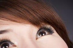 Eyelash Stock Photos