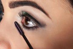 Eyelash brush makeup Stock Images