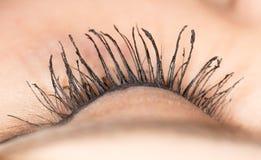 eyelash Close-up foto de stock