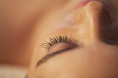 Eyelash closeup. Woman face, eyelash close up Royalty Free Stock Images