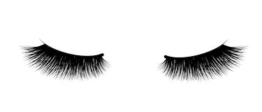Eyelash extension. A beautiful make-up. Thick fuzzy cilia. Mascara for volume and length. False Royalty Free Stock Photo