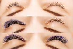 Eyelash Extension. Comparison of female eyes before and after. Blue ombre lashes. Comparison of female eyes before and after eyelash extension. Blue ombre royalty free stock photo
