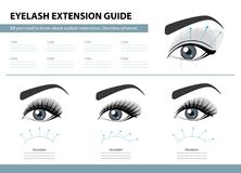 Eyelash extension guide. Direction schemes. Tips and tricks for lash extension. Infographic vector illustration. Template. For Makeup and cosmetic procedures Royalty Free Stock Photography