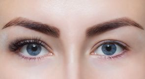 Eyelash extension procedure close up. Beautiful Woman with long lashes in a beauty salon royalty free stock photos