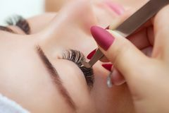 Eyelash extension procedure close up. stock image