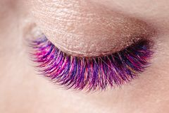 Eyelash extension procedure. royalty free stock photo