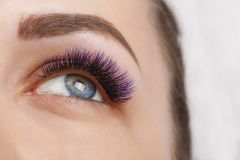 Eyelash Extension Procedure. Woman Eye with Long Blue Eyelashes. Ombre effect. Close up, selective focus. stock photography