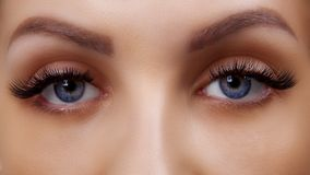 Eyelash Extension Procedure. Woman Eye with Long Blue Eyelashes. Ombre effect. Close up, selective focus. royalty free stock images