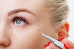 Eyelash Extension Procedure. Woman Eye with Long Eyelashes. Close up, selective focus. Royalty Free Stock Image