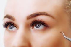Eyelash Extension Procedure. Woman Eye with Long Eyelashes. Close up, selective focus. Stock Images