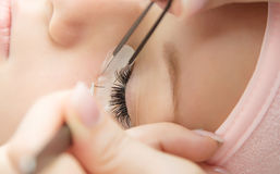 Eyelash Extension Procedure. Woman Eye with Long Eyelashes. Lashes stock photography