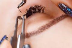 Eyelash Extension Procedure. Woman Eye with Long Eyelashes. Lashes, close up, macro, selective focus. Stock Images