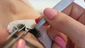 Eyelash Extension Procedure. Woman Eye with Long Eyelashes. Lashes, close up, macro, selective focus. stock video
