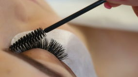 Eyelash Extension Procedure. Woman Eye with Long Eyelashes. Lashes, close up, macro, selective focus. stock footage