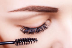 Eyelash Extension Procedure. Woman Eye with Long Eyelashes. Lashes, close up, macro, selective focus. Stock Photos