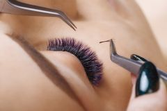 Eyelash Extension Procedure. Woman Eye with Long Blue Eyelashes. Ombre effect. Close up, selective focus. royalty free stock photos