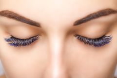 Eyelash Extension Procedure. Woman Eye with Long Blue Eyelashes. Ombre effect. Close up, selective focus. stock photos
